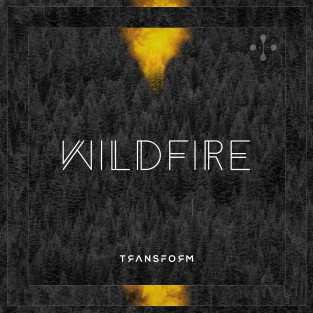 Wildfire (Kevin Aleksander Remix - No Rap) cover art