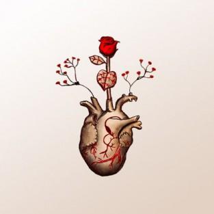Flower cover art