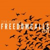 Product Image: The Moment - Freedom Calls: Live