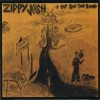 Product Image: Zippy Josh And The Rag Tag Band - Stupidville