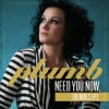 Product Image: Plumb - Need You Now (Remixes)