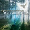 Product Image: The Christian Gospel Choir - 40 Must-Have Favorite Hymns: Angels Watching Over Me