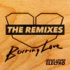 Product Image: Jesus Loves Electro - Burning Love: The Remixes