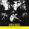 Product Image: Paper Route - The Peace Of Wild Things