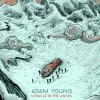 Product Image: Adam Young - Miracle In The Andes