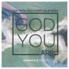 Product Image: Vineyard Worship - God You Are