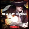 Product Image: Steve Grace - New Day Coming