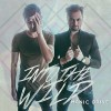 Product Image: Manic Drive - Into The Wild