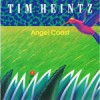 Product Image: Tim Heintz - Angel Coast