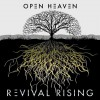 Product Image: Open Heaven - Revival Rising