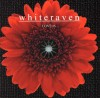 Product Image: Whiteraven - Love Is