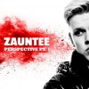 Product Image: Zauntee - Perspective Pt 1