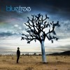 Product Image: Bluetree - God Of This City
