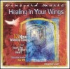 Product Image: Vineyard Music, Dan Wilt - Touching The Father's Heart 40 : Healing In Your Wings