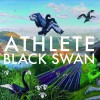 Product Image: Athlete - Black Swan