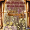 Product Image: Seindorf Beaumaris Band - Five Blooms In A Welsh Garden