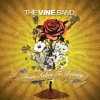 Product Image: The Vine Band - From Ashes To Beauty